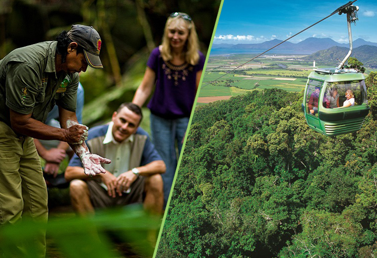 Skyrail & Train + Daintree Walkabout