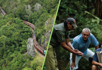 Self-Drive Skyrail & Train + Daintree Walkabout